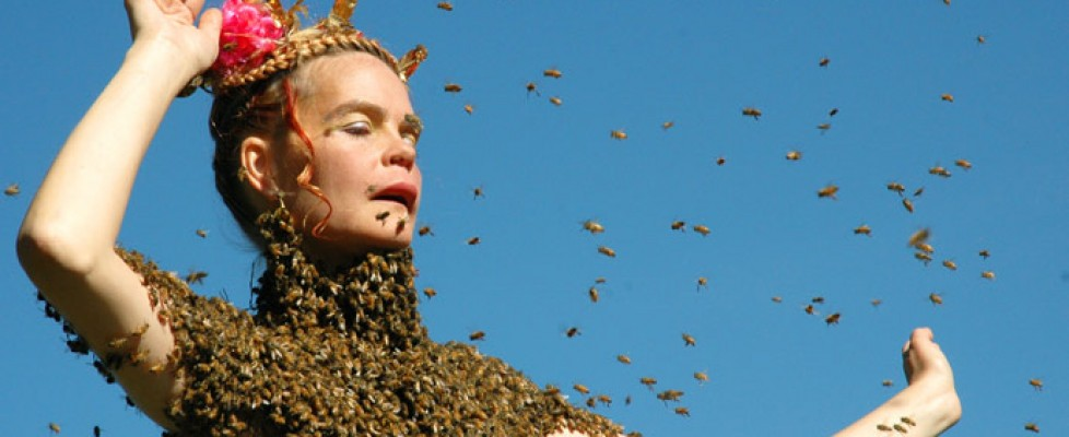 Film: Queen of the Sun – What are the Bees telling us?